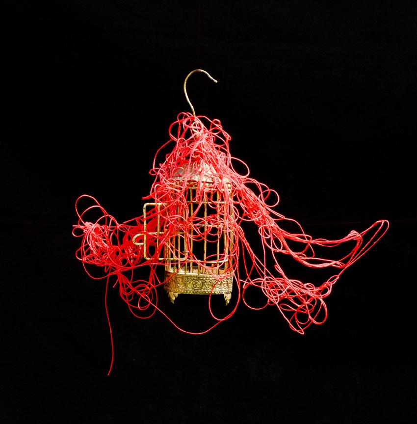 Photographie de cage à oiseau qui vole sur fond noir avec fil rouge