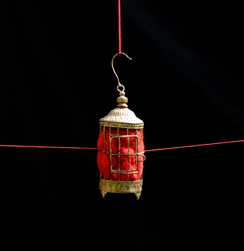 mini cage à oiseau tenu par un fil rouge sur fond noire